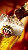 Pilotní foto Amstel 12°